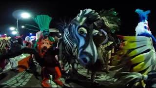 Carnaval de Corralejo Live Zoo 360 VR video