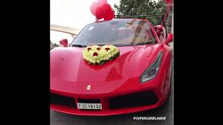 El mejor regalo de San Valentin / Best Valentines Surprise Ever!
