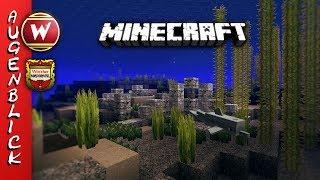 Unter dem Meer || Dein Minecraft Augenblick