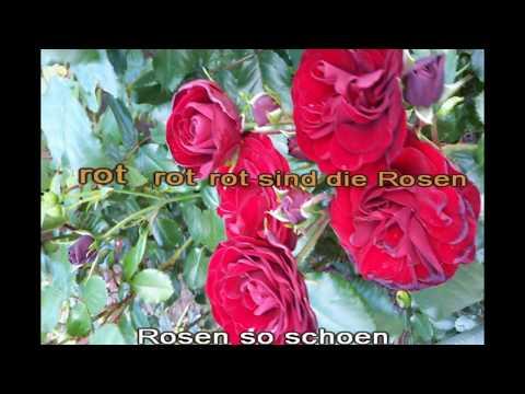Rot sind die Rosen - Semino Rossi - Karaoke