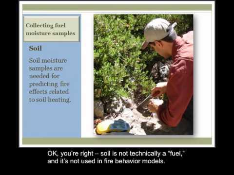 Lesson 5: Fuel Moisture