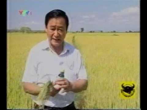 Giáo sư Nguyễn Lân Hùng nói về NEB-26 5