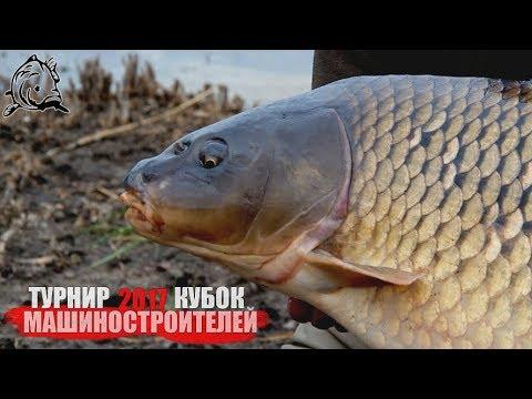 как ловить карпа в украине видео
