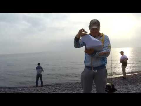 RockTheFish - Картинки с берега #1 Новороссийский сарган 2018
