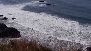 Ecola State Park Oregon Coast Beach Tide Ocean Waves