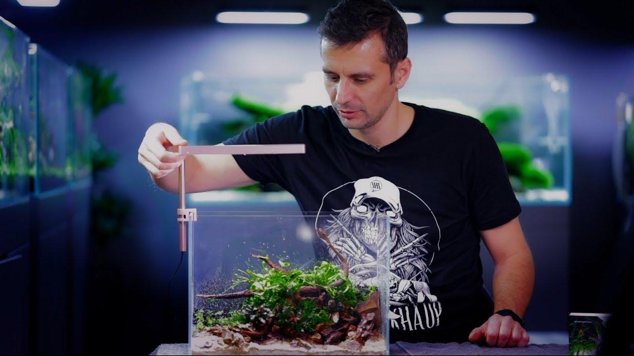 Build A Nano Aquascape Starting Guide For Beginners Youtube