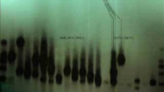 Nine Inch Nails - The Line Begins To Blur (Remixed By Reaps)