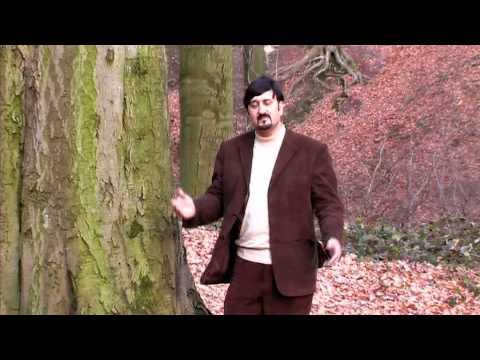 Ahmad Zia Rashidi - Sina Az Atash (3D)
