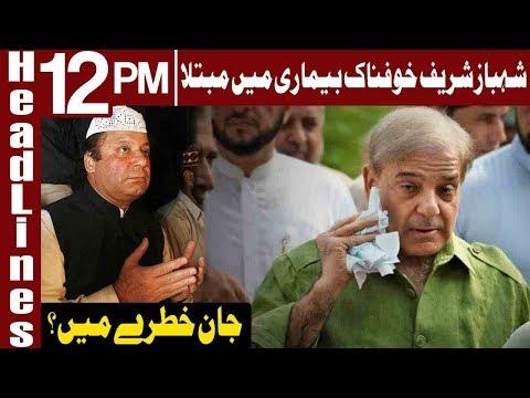 Shahbaz Sharif's life in Danger? | Headlines 12 PM | 3 January 2019 | Express News