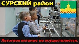 Льготное питание в школах Сурского р-на не осуществляется.