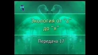 Экология. Передача 17. Жизненные формы животных. Часть 1
