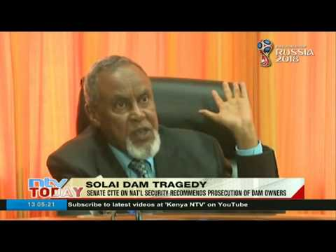 Senate security committee recommends prosecution of Patel dam owners