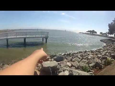 FOOTAGE OF ME FISHING AT THE SAN LEANDRO MARINA