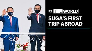 Japan's Suga visits Indonesia, Vietnam on first overseas trip as Prime Minister | The World