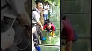 Страх и ужас на стеклянном мосту в Китае