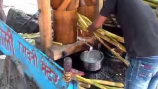 Bull churning sugarcane juice slowly
