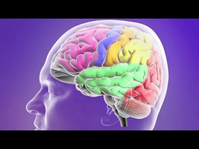 Neurología.
