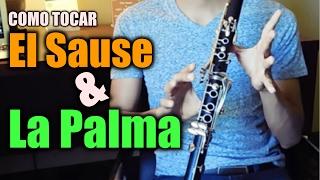 El Sause y La Palma / Tutorial De Clarinete / AU MUSIC