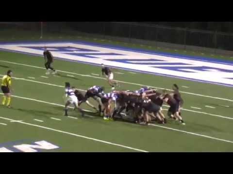 Springfield  College Rugby v CCSU 11/8/14