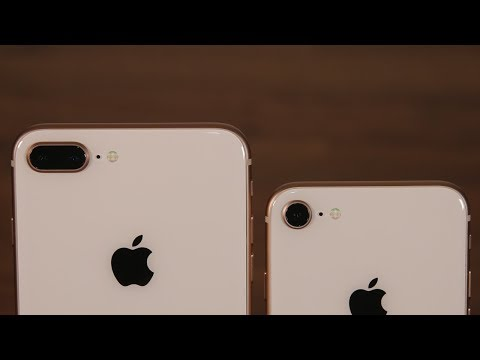 IPhone 8 Vs IPhone 8 Plus: Camera Differences You Need To Know