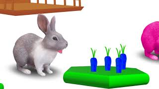 Tubidy ioLearn Colors with Colorful RABIT Xylophone Funny Animals Colors Videos for Kids   RainbowPl