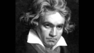 Ludwig van Beethoven String Quartet No.15 in A minor, Op.132 - 2. Allegro ma non tanto