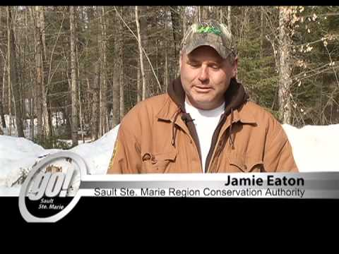Sault Ste. Marie Region Conservation Authority - Flood Control