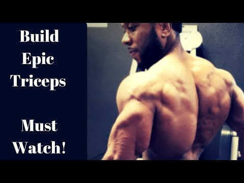 Build The Perfect TRICEPS | Tutorial & Tips | Intense & Effective Routine