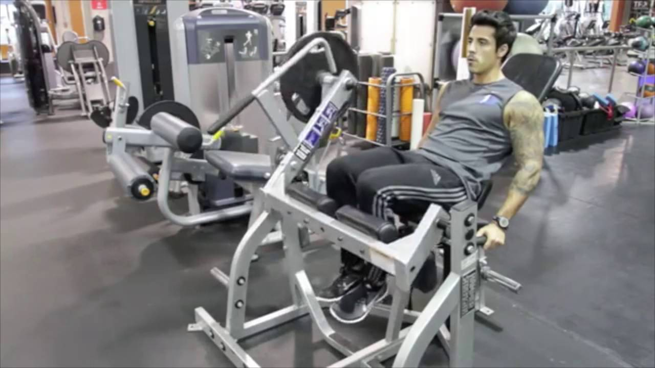 Seated Leg Curl Hammer Strength Plated Loaded