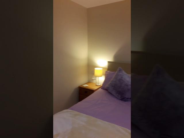 Double room to let in a lovely home Main Photo