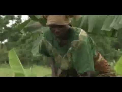 ZBC - Zimbabwe Broadcasting Corporation