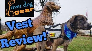 River Dog Gear Boulder Vest Review | Service Dog Gear Tips