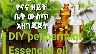 የናና ዘይት በቤት ውስጥ አዘገጃጀት ለቆዳና ለፀጉር እድገት  DIY peppermint Essencial oil/Denkenesh Ethiopiopa