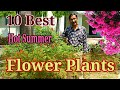 10 Best Permanent Heat Tolerant Flowering Plants For Full Sun