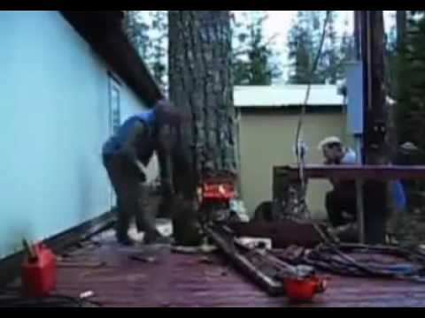 Shoking Video When A Tree Cut Down Between Two House