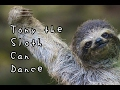 Tony The Sloth Can Dance - Children's Bedtime Story/Meditation
