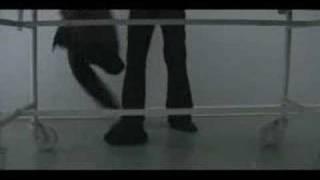 Repeat youtube video NECROFILIA