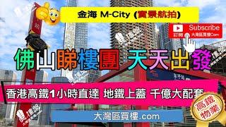 香港高鐵1小時直達 地鐵上蓋  三地鐵雙輕軌 佛山新城的核心位置 #金海MCity