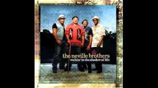The Neville Brothers - Can't Stop The Funk (Audiophile Sound)