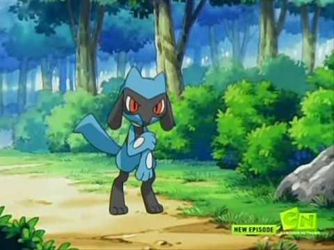 Riolu Lucario Animal I Have Become Youtube