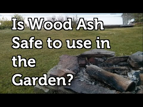 Is wood ash safe to use in a vegetable garden youtube for Is wood ash good for the garden