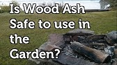 Is Pressure Treated Wood Harmful to use in the Garden? - YouTube