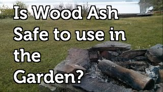 Is Wood Ash Safe To Use In A Vegetable Garden?
