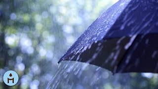 Nature Sounds: Rain Sounds One Hour White Noise for Sleeping, Sleep Aid for Everybody ☂816