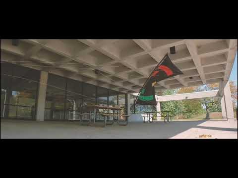 Willow Metropark | Djinn Quad Kite Flying | Pool Area