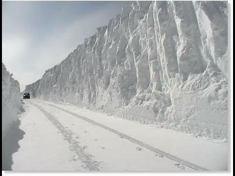 Shocking! Governments Are Preparing For A Mini Ice Age!