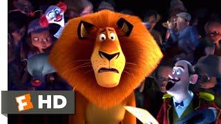 Madagascar 3 (2012) - Circus Fail Scene (6/10)   Movieclips