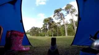 Camping in the New Forest