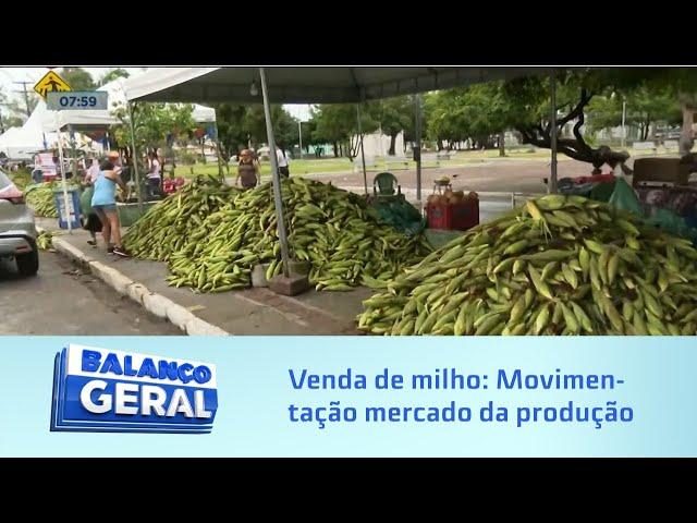 Venda de milho: Movimentação hoje no mercado da produção