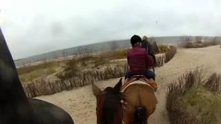 2013-11-16 Jazda na Kalinie po plaży i lesie